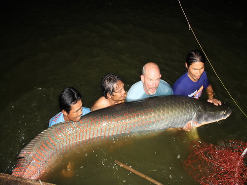 10ft record arapaima caught fishing in Thailand
