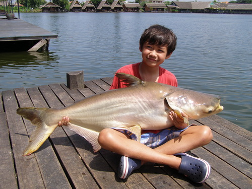 Junior fishing in Bangkok
