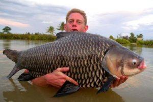 Best Carp Fishing in Thailand