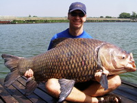 Siamese carp fishing Bangkok at Bungsamran Lake