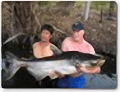 Fishing Thailand for Mekong giant catfish