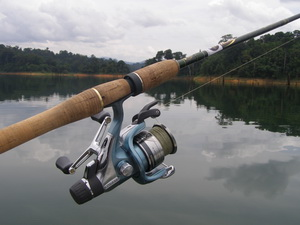 Shimano Spirex 4000RG spinning reel great for snakehead fishing