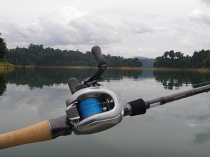 Shimano MG7 baitcasting reel for snakehead fishing