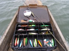 snakehead surface lure selection