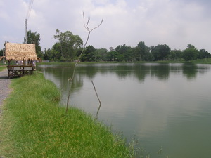 Lure fishing in Thailand at Pilot 111