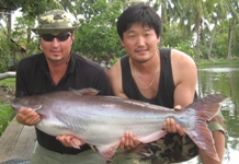 Record Striped Catfish Fishing Bangkok